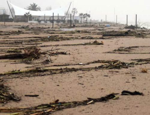 Instruccions per a la neteja de la platja després del temporal