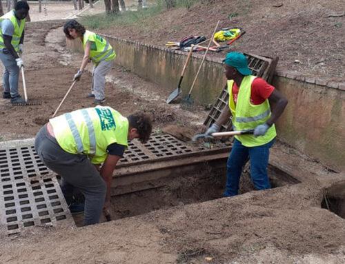 Els Amics del Parc Dalmau arreglen els canals del parc després de la tempesta