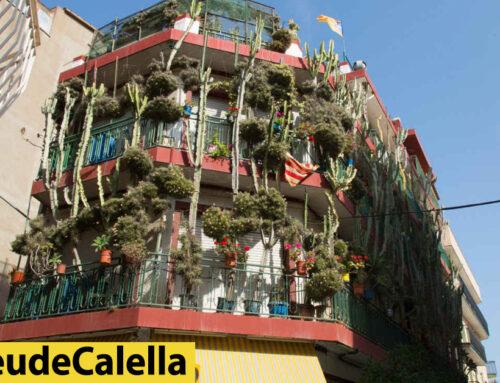 Jardins verticals per donar vida al carrer Jovara