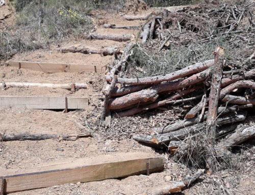 Els Amics del Parc Dalmau denuncien el robatori de material