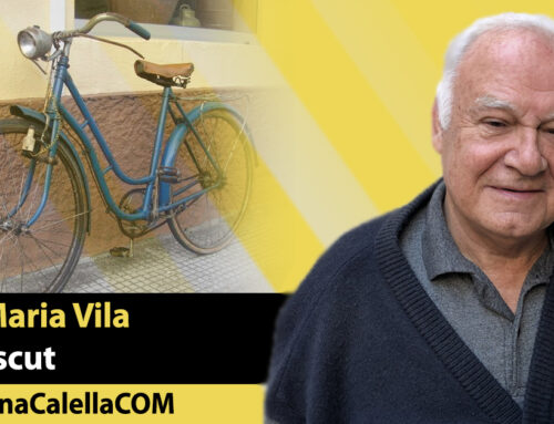 Els anys cinquanta (VII): les bicicletes